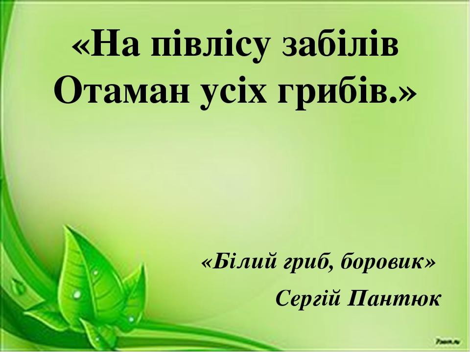 «На півлісу забілів Отаман усіх грибів.» «Білий гриб, боровик» Сергій Пантюк