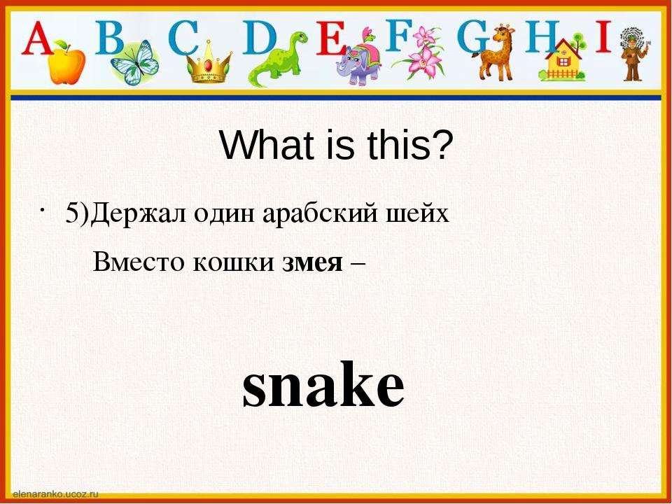 What is this? 5)Держал один арабский шейх Вместо кошки змея – snake