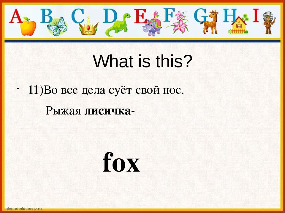 What is this? 11)Во все дела суёт свой нос. Рыжая лисичка- fox