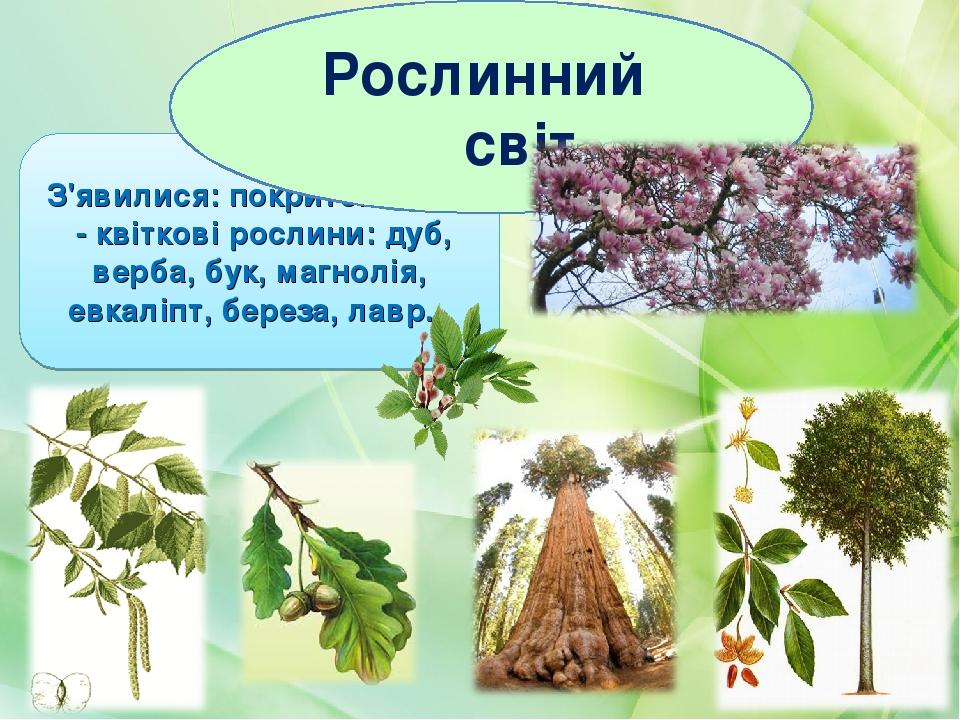 З'явилися: покритонасінні - квіткові рослини: дуб, верба, бук, магнолія, евкаліпт, береза, лавр.  Рослинний світ