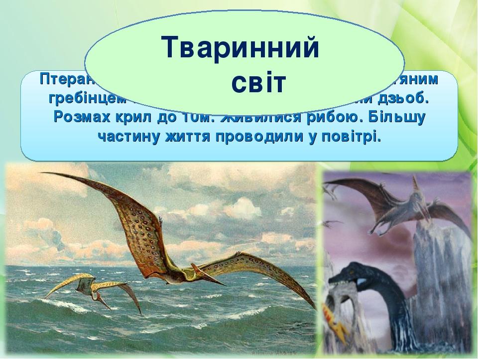 Птеранодон мав великий череп з довгим кістяним гребінцем на потилиці і довгий беззубий дзьоб. Розмах крил до 10м. Живилися рибою. Більшу частину жи...