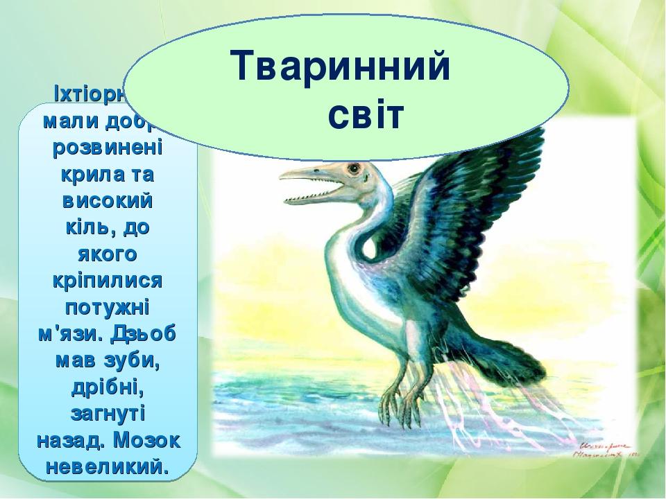 Іхтіорніси мали добре розвинені крила та високий кіль, до якого кріпилися потужні м'язи. Дзьоб мав зуби, дрібні, загнуті назад. Мозок невеликий. Тв...