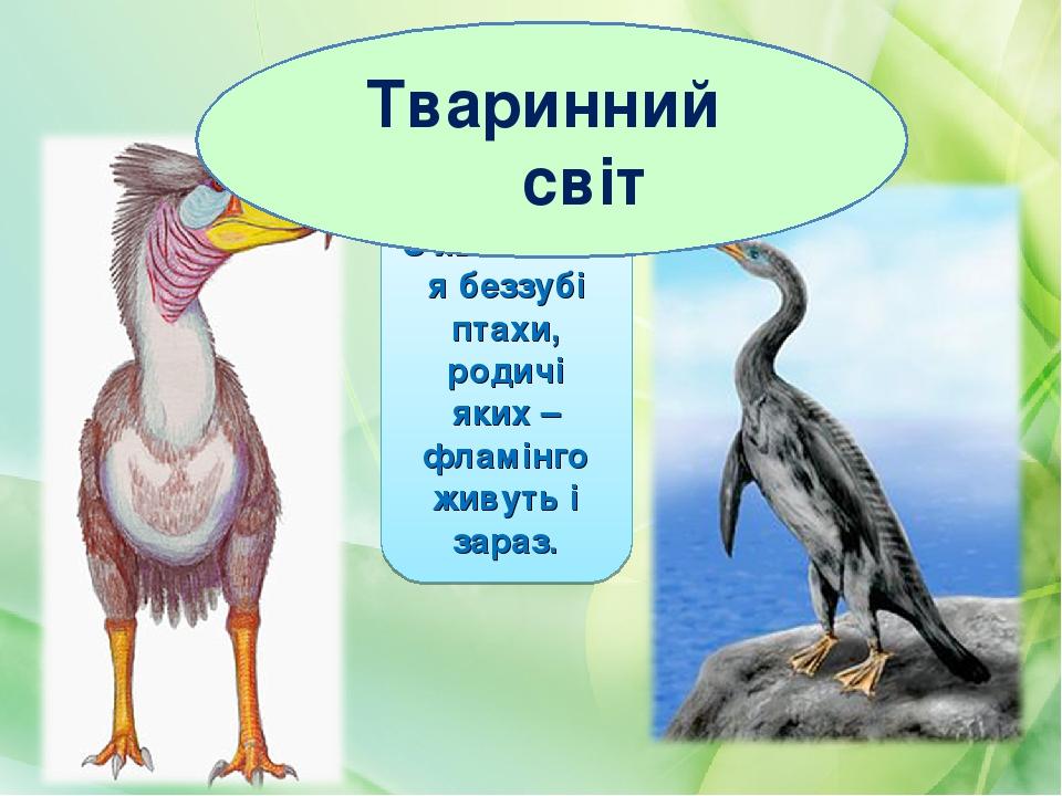 З'являються беззубі птахи, родичі яких – фламінго живуть і зараз. Тваринний світ