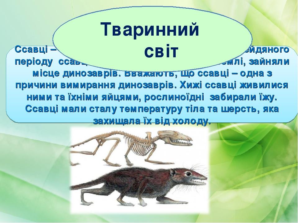 Ссавці – сумчасті і плацентарні. Наприкінці крейдяного періоду ссавці широко розселилися по Землі, зайняли місце динозаврів. Вважають, що ссавці – ...