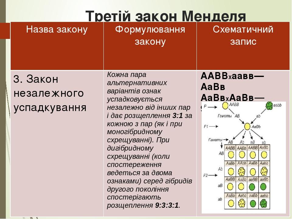 Третій закон Менделя Назва закону Формулювання закону Схематичний запис 3. Закон незалежного успадкування Кожна пара альтернативних варіантів ознак...