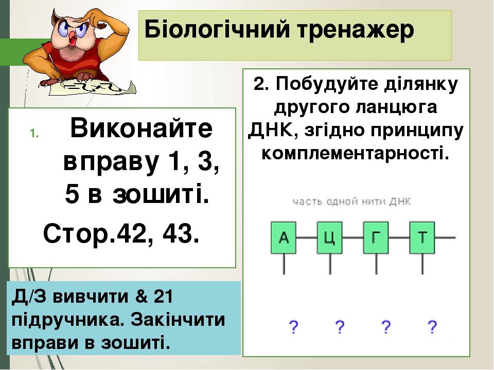 Біологічний тренажер Виконайте вправу 1, 3, 5 в зошиті. Стор.42, 43. 2. Побудуйте ділянку другого ланцюга ДНК, згідно принципу комплементарності. Д...