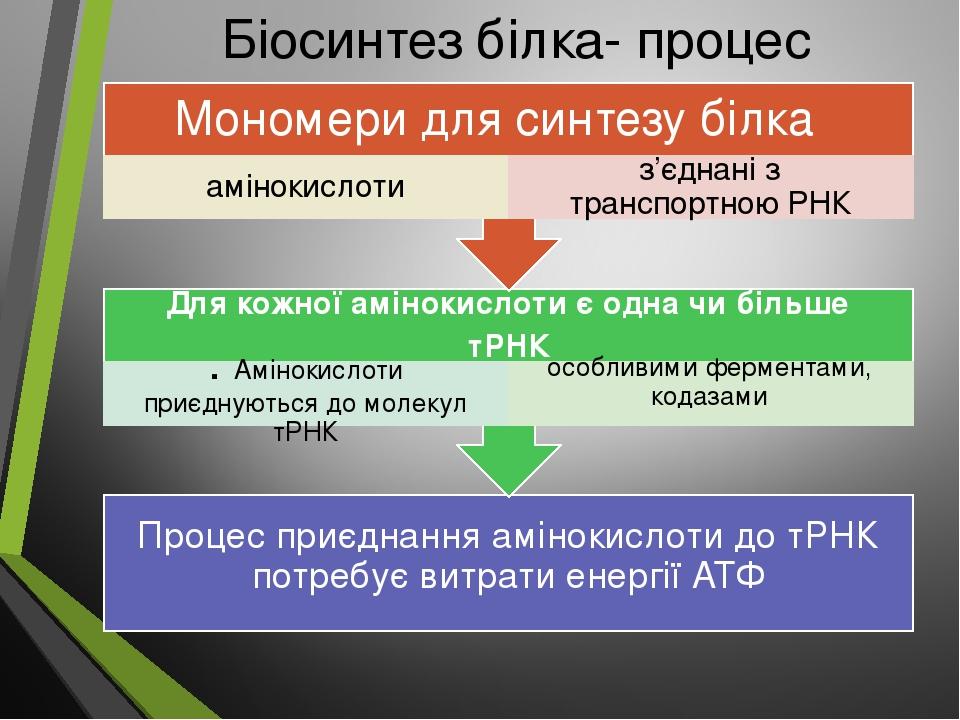 Біосинтез білка- процес трансляції Процес приєднання амінокислоти до тРНК потребує витрати енергії АТФ Для кожної амінокислоти є одна чи більше тРН...