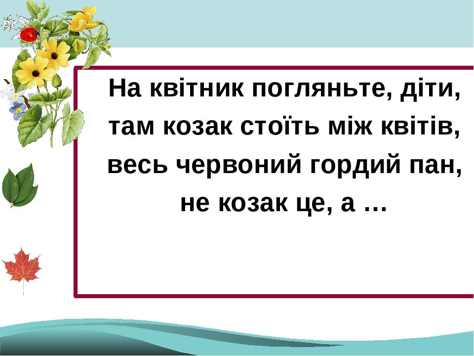 На квітник погляньте, діти, там козак стоїть між квітів, весь червоний гордий пан, не козак це, а …