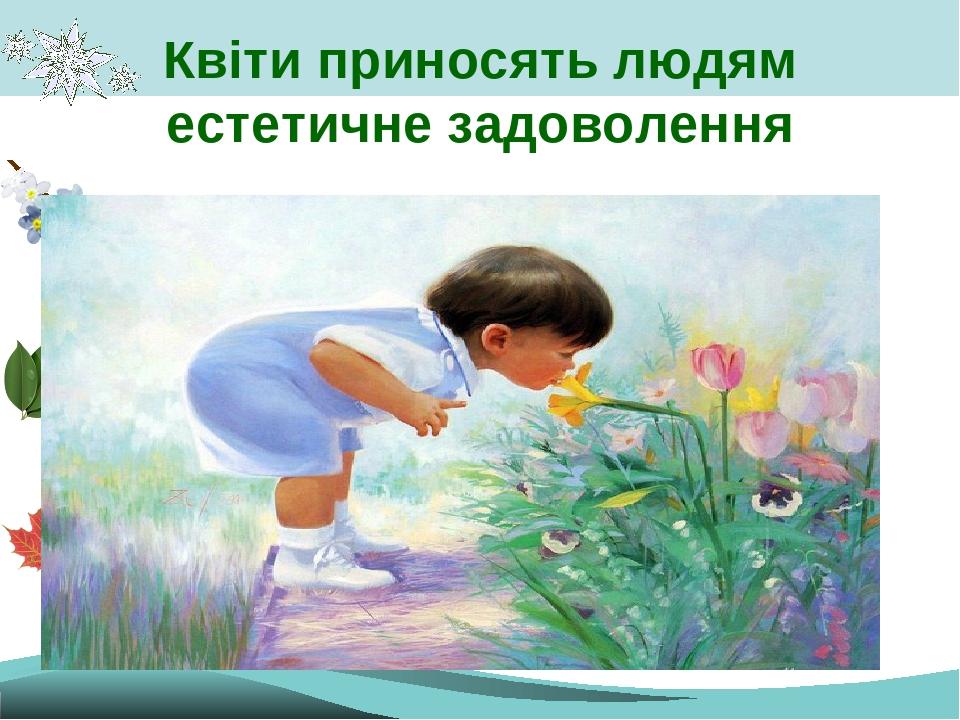 Квіти приносять людям естетичне задоволення