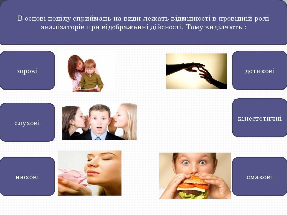 В основі поділу сприймань на види лежать відмінності в провідній ролі аналізаторів при відображенні дійсності. Тому виділяють : зорові слухові доти...