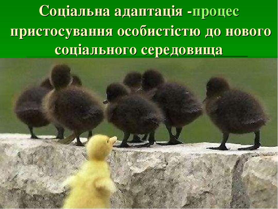 Соціальна адаптація -процеспристосування особистістю до нового соціального середовища