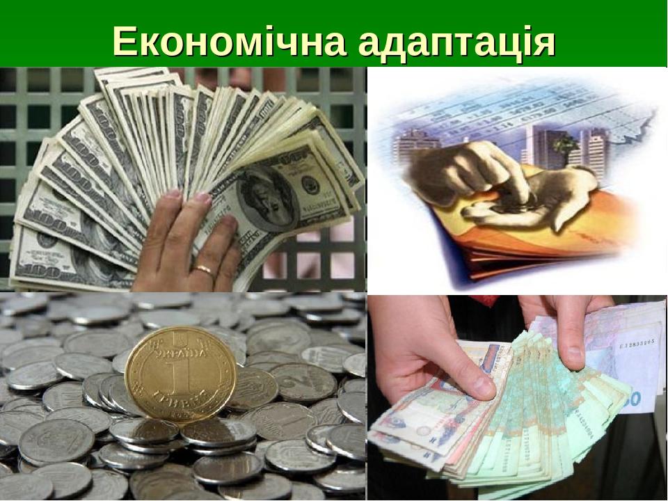 Економічна адаптація