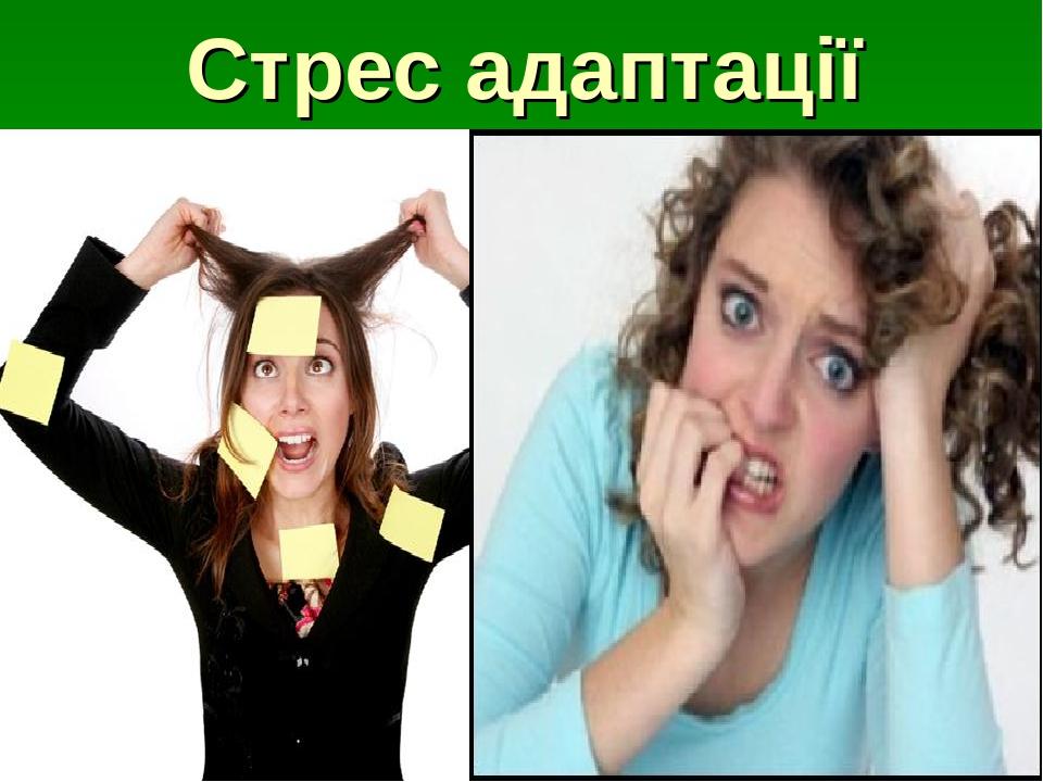 Стрес адаптації