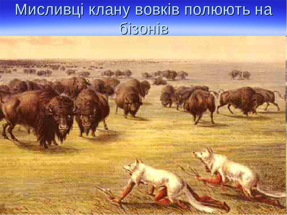 Мисливці клану вовків полюють на бізонів