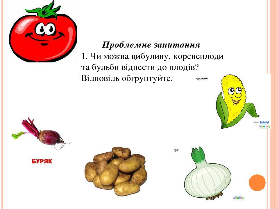 Проблемне запитання 1. Чи можна цибулину, коренеплоди та бульби віднести до плодів?Відповідь обгрунтуйте.