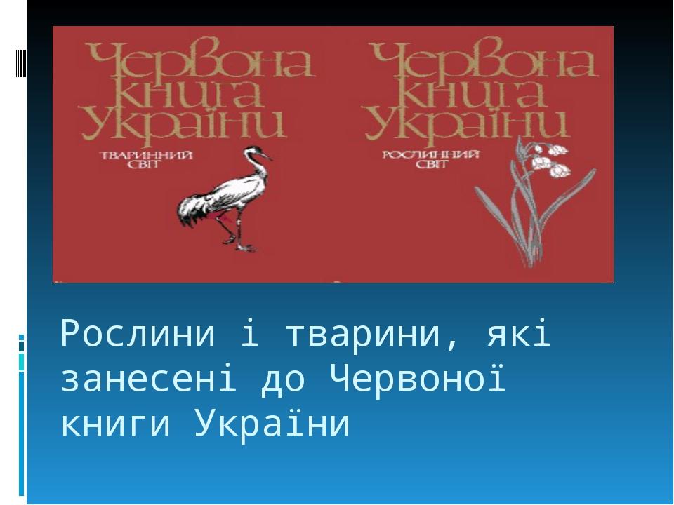 Рослини і тварини, які занесені до Червоної книги України