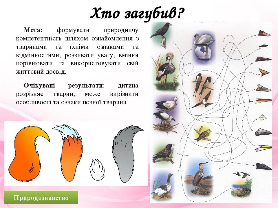 Хто загубив? Мета: формувати природничу компетентність шляхом ознайомлення з тваринами та їхніми ознаками та відмінностями; розвивати увагу, вміння...