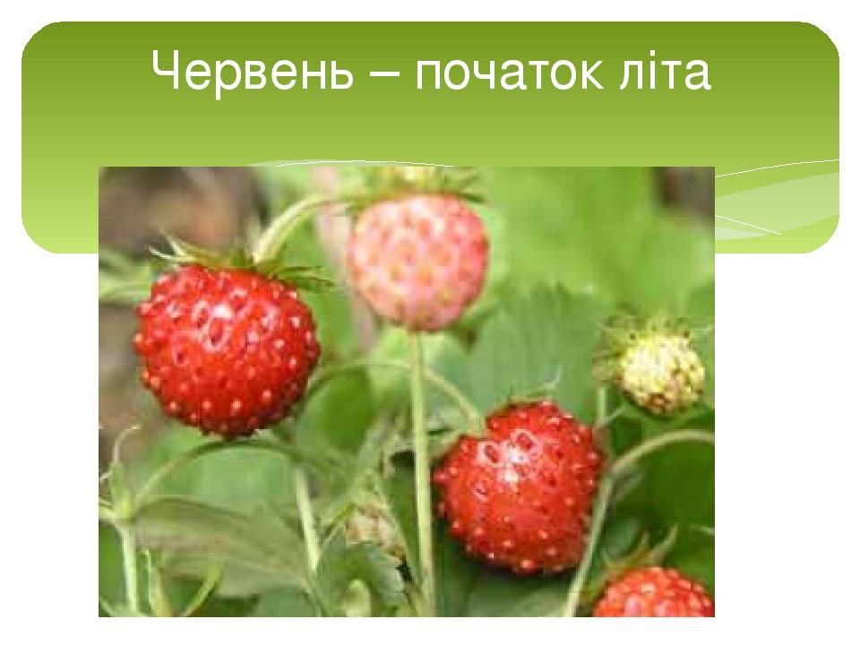Червень – початок літа