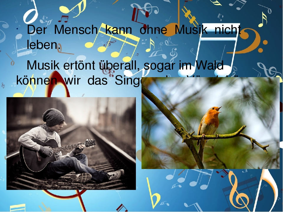 Der Mensch kann ohne Musik nicht leben. Musik ertönt überall, sogar im Wald können wir das Singen der Vögel hören.