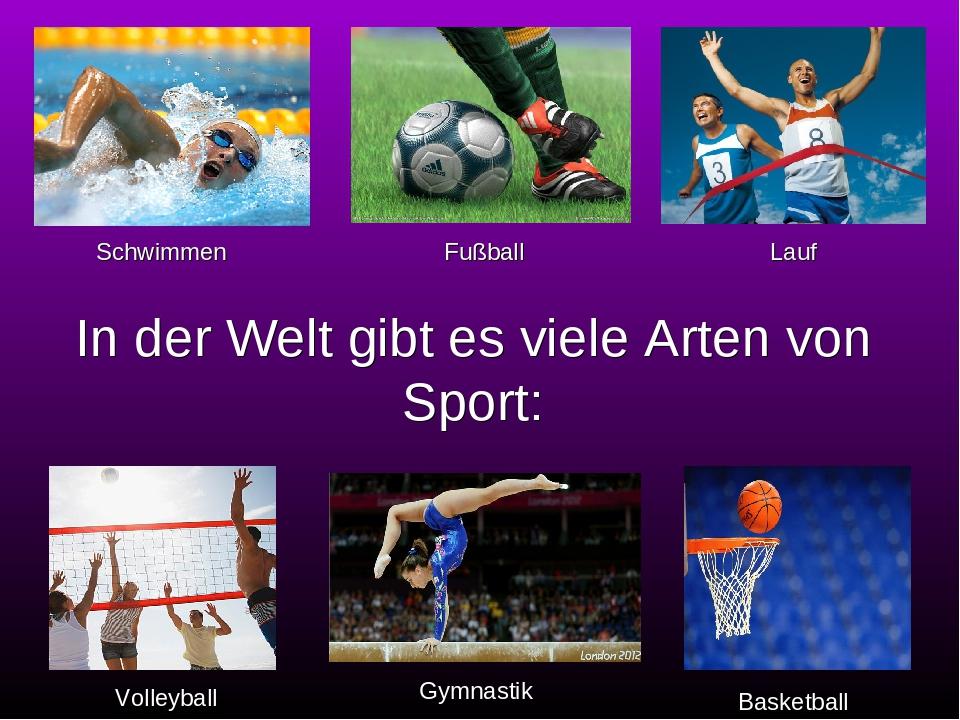 In der Welt gibt es viele Arten von Sport: Volleyball Fußball Basketball Schwimmen Lauf Gymnastik