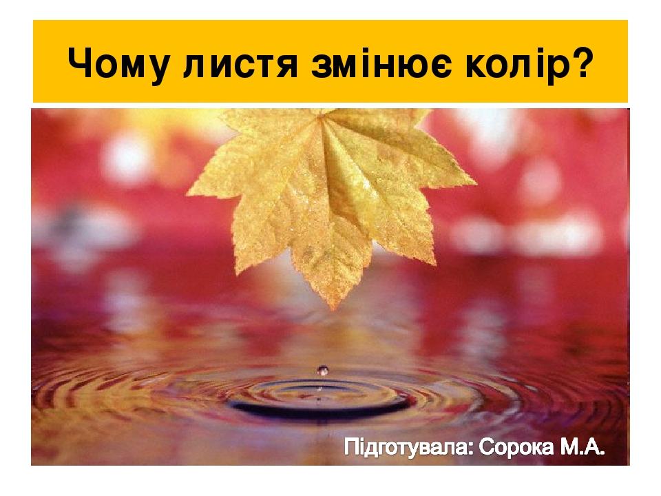 Чому листя змінює колір?