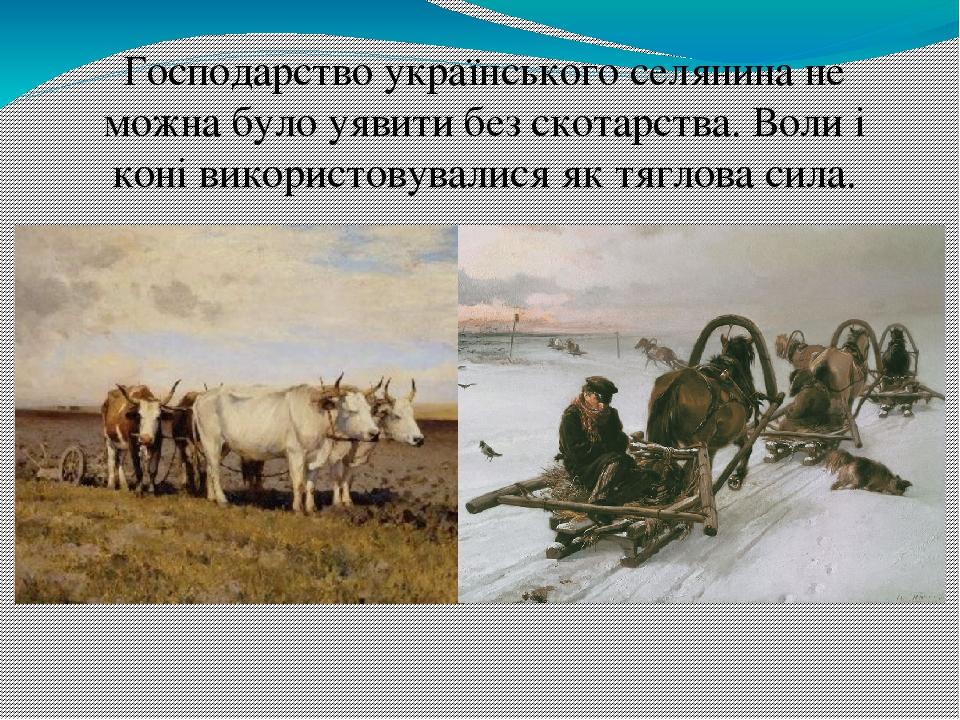 Господарство українського селянина не можна було уявити без скотарства. Воли і коні використовувалися як тяглова сила.