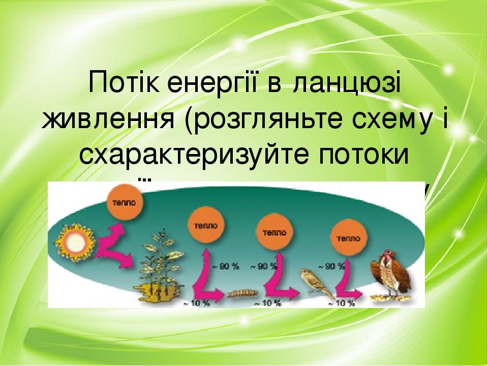Потік енергії в ланцюзі живлення (розгляньте схему і схарактеризуйте потоки енергії в запропонованому ланцюзі живлення)
