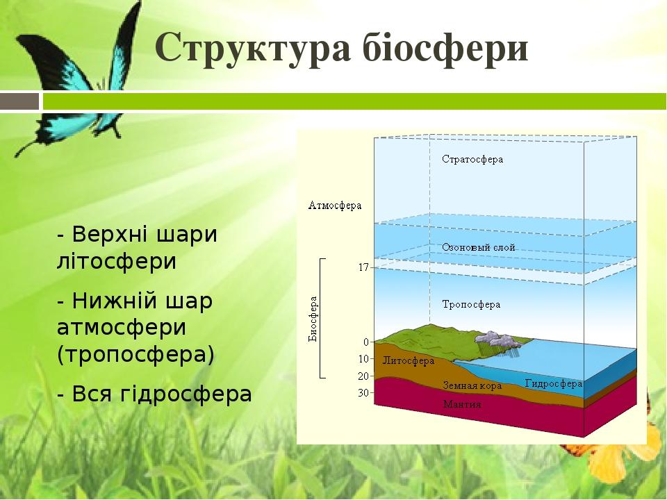 Структура біосфери - Верхні шари літосфери - Нижній шар атмосфери (тропосфера) - Вся гідросфера