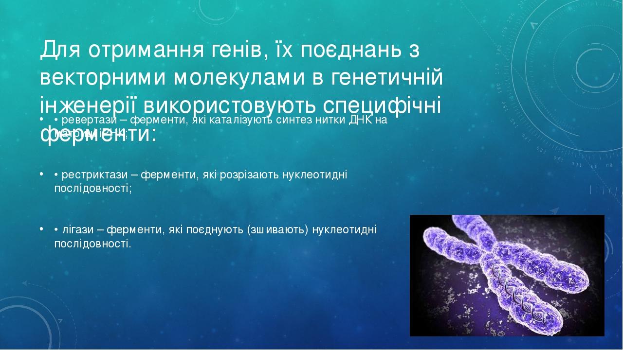 Для отримання генів, їх поєднань з векторними молекулами в генетичній інженерії використовують специфічні ферменти: • ревертази – ферменти, які кат...