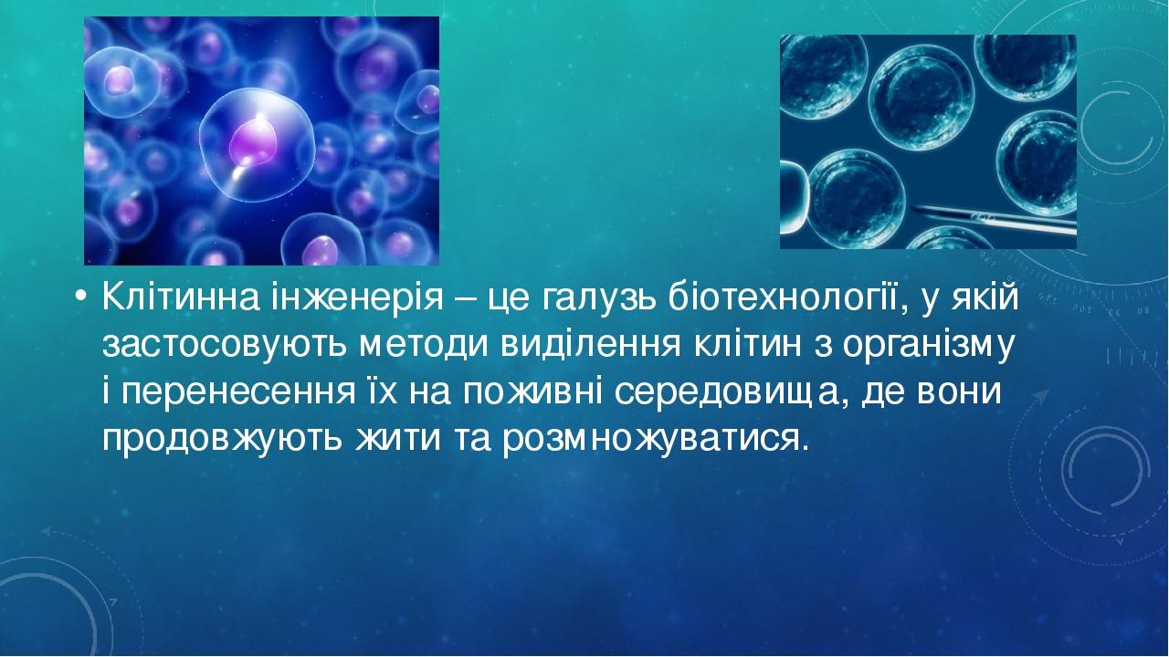 Клітинна інженерія – це галузь біотехнології, у якій застосовують методи виділення клітин з організму і перенесення їх на поживні середовища, де во...
