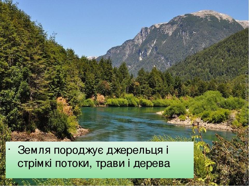 Земля породжує джерельця і стрімкі потоки, трави і дерева