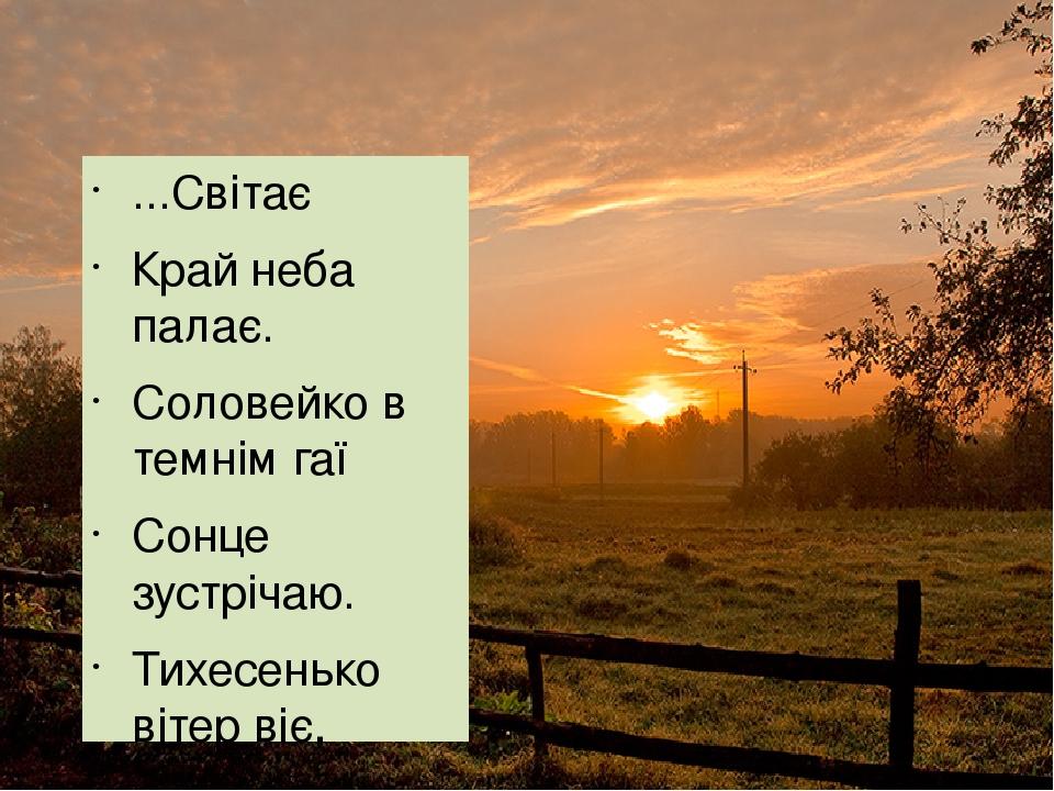 ...Світає Край неба палає. Соловейко в темнім гаї Сонце зустрічаю. Тихесенько вітер віє, Степи, лана мріюьть; Між ярами над ставами Верби зеленіють...