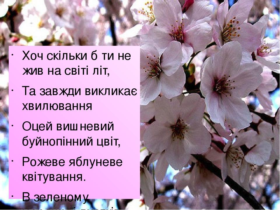 Хоч скільки б ти не жив на світі літ, Та завжди викликає хвилювання Оцей вишневий буйнопінний цвіт, Рожеве яблуневе квітування. В зеленому мережеві...