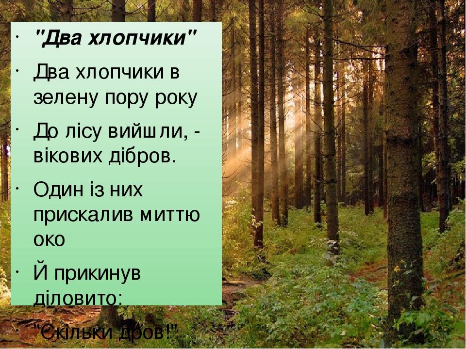 """""""Два хлопчики"""" Два хлопчики в зелену пору року До лісу вийшли, - вікових дібров. Один із них прискалив миттю око Й прикинув діловито: """"Скільки дров..."""