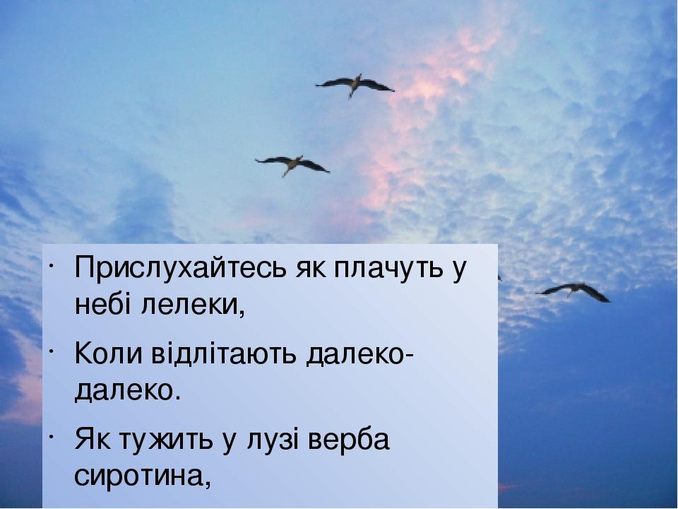 Прислухайтесь як плачуть у небі лелеки, Коли відлітають далеко-далеко. Як тужить у лузі верба сиротина, Полить, як вмирає життя в павутині, Як стог...