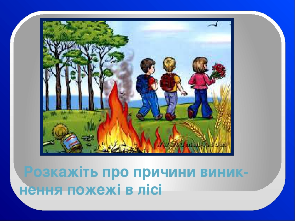 Розкажіть про причини виник-нення пожежі в лісі