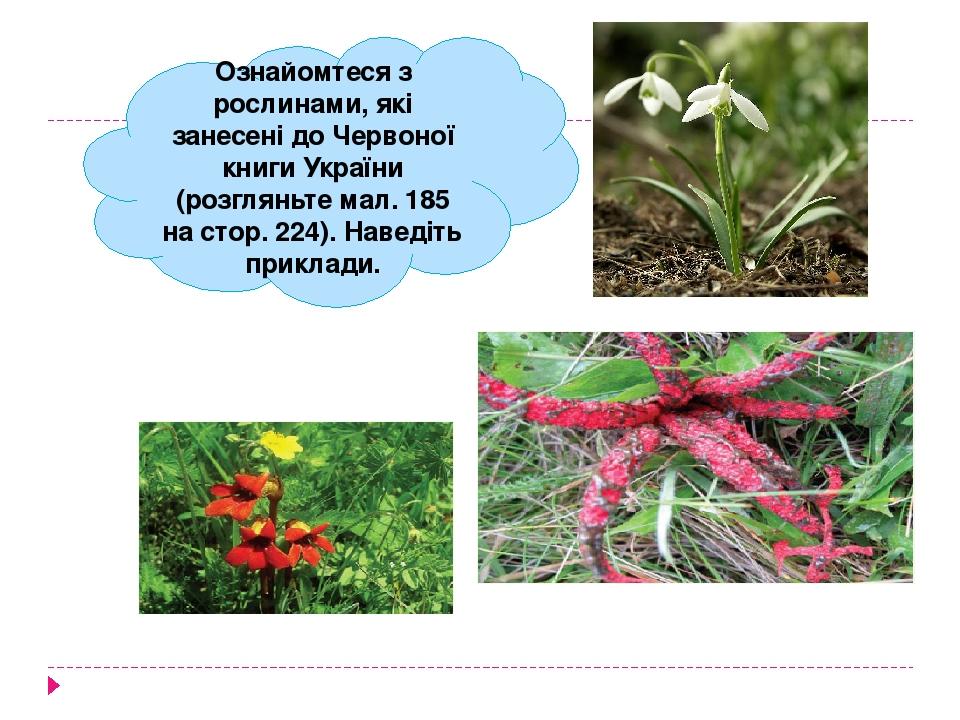 Ознайомтеся з рослинами, які занесені до Червоної книги України (розгляньте мал. 185 на стор. 224). Наведіть приклади.
