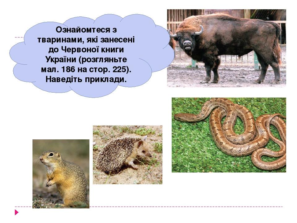 Ознайомтеся з тваринами, які занесені до Червоної книги України (розгляньте мал. 186 на стор. 225). Наведіть приклади.