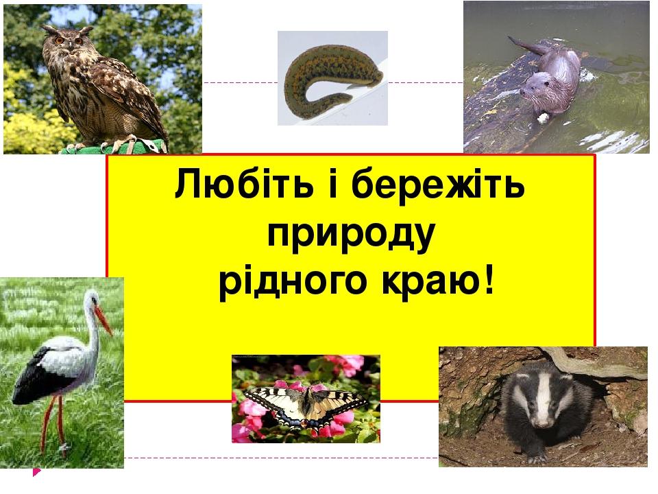 Любіть і бережіть природу рідного краю!
