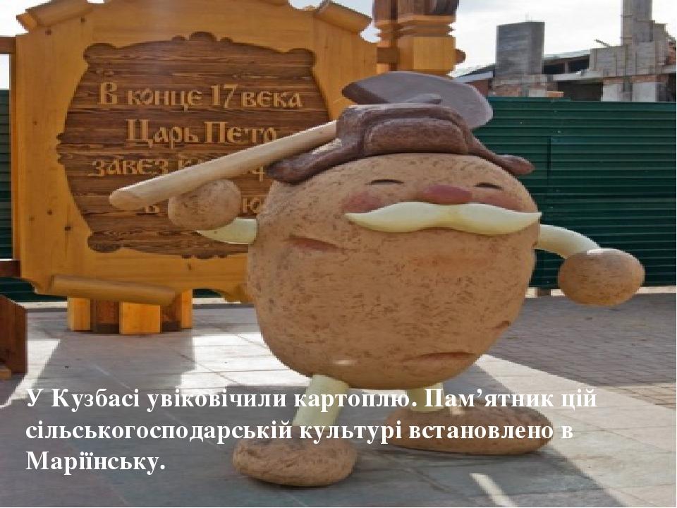 У Кузбасі увіковічили картоплю. Пам'ятник цій сільськогосподарській культурі встановлено в Маріїнську.