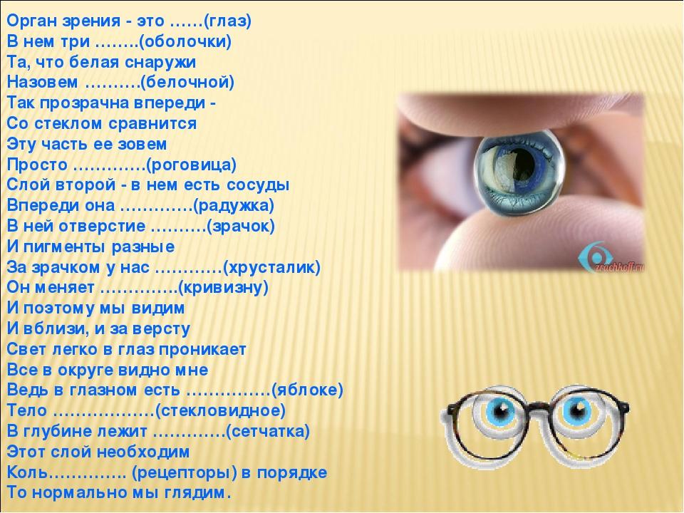 Орган зрения - это ……(глаз) В нем три ……..(оболочки) Та, что белая снаружи Назовем ……….(белочной) Так прозрачна впереди - Со стеклом сравнится Эту ...