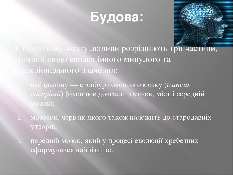 Будова: У головному мозку людини розрізняють три частини, відмінні щодо еволюційного минулого та функціонального значення: найдавнішу— стовбур гол...
