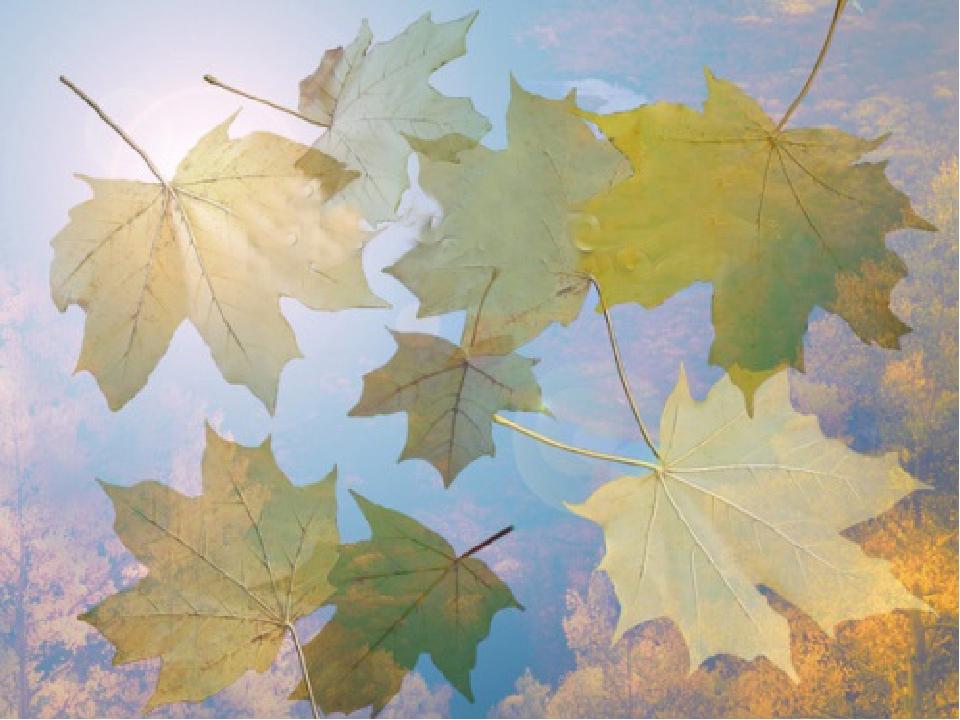 Мультяшная, картинки осень 1 сентября