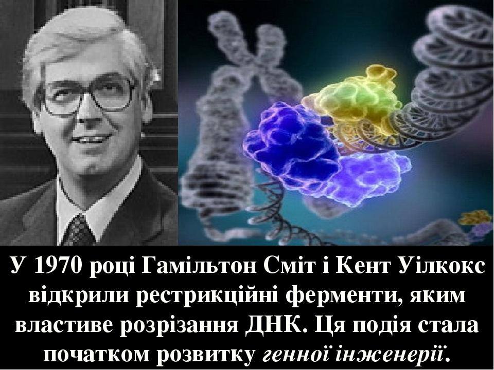 У 1970 році Гамільтон Сміт і Кент Уілкокс відкрили рестрикційні ферменти, яким властиве розрізання ДНК. Ця подія стала початком розвитку генної інж...