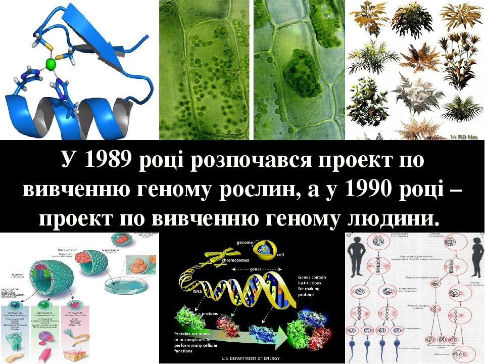 У 1989 році розпочався проект по вивченню геному рослин, а у 1990 році – проект по вивченню геному людини.