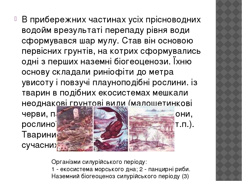 В прибережних частинах усіх прісноводних водойм врезультаті перепаду рівня води сформувався шар мулу. Став він основою первісних грунтів, на котрих...