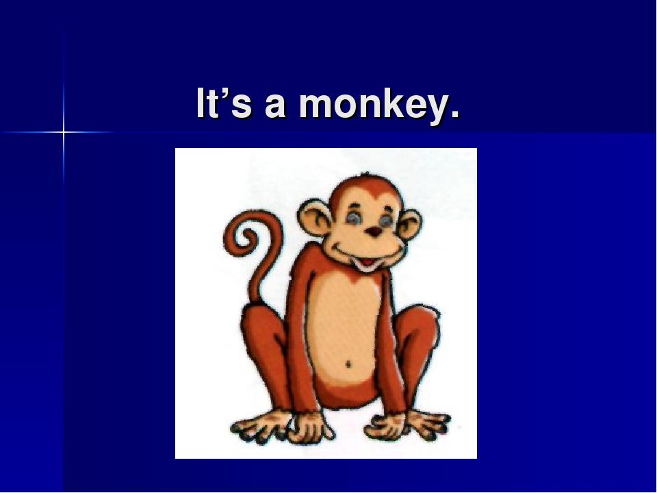 It's a monkey.