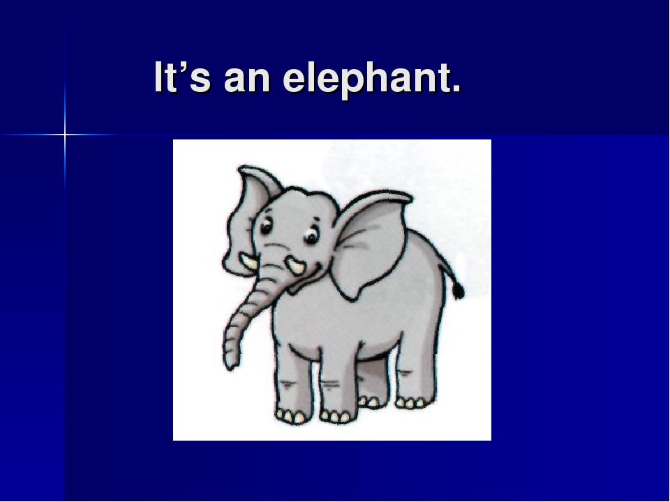 It's an elephant.