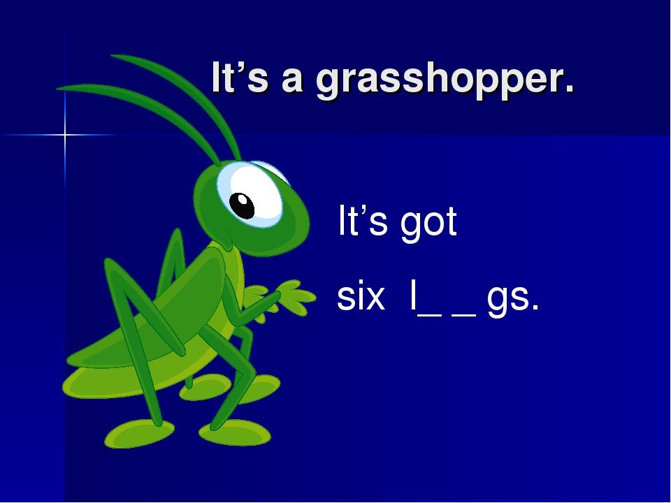 It's a grasshopper. It's got six l_ _ gs.