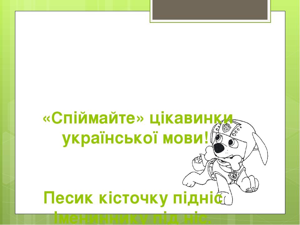 «Спіймайте» цікавинки української мови! Песик кісточку підніс Імениннику під ніс.
